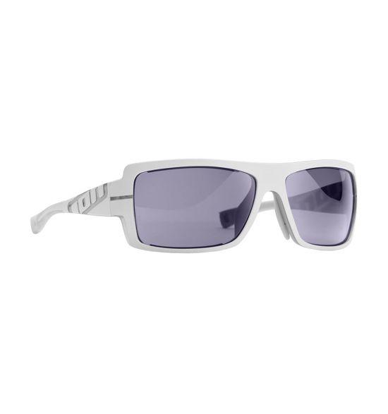 ION Vision Ray Core Sunglasses